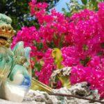 旅の計画 ANAで春の沖縄