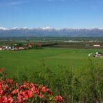 旅の計画 夏の北海道で避暑と美食 来週ブログ休みます